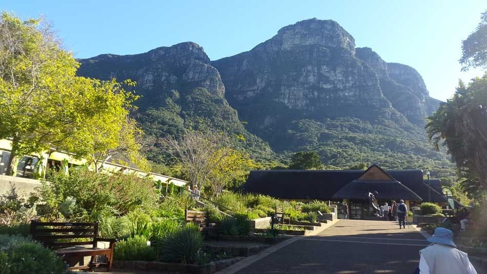 Kirstenbosch Botanical Gardens in Autumn